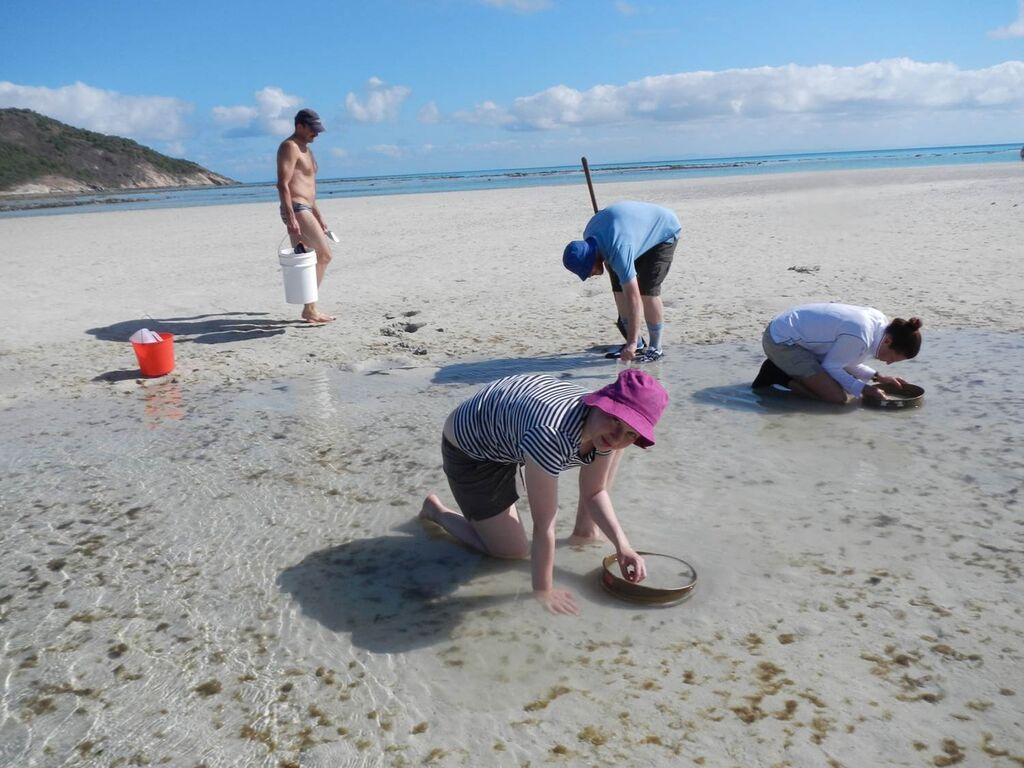 pic 1 working in sand