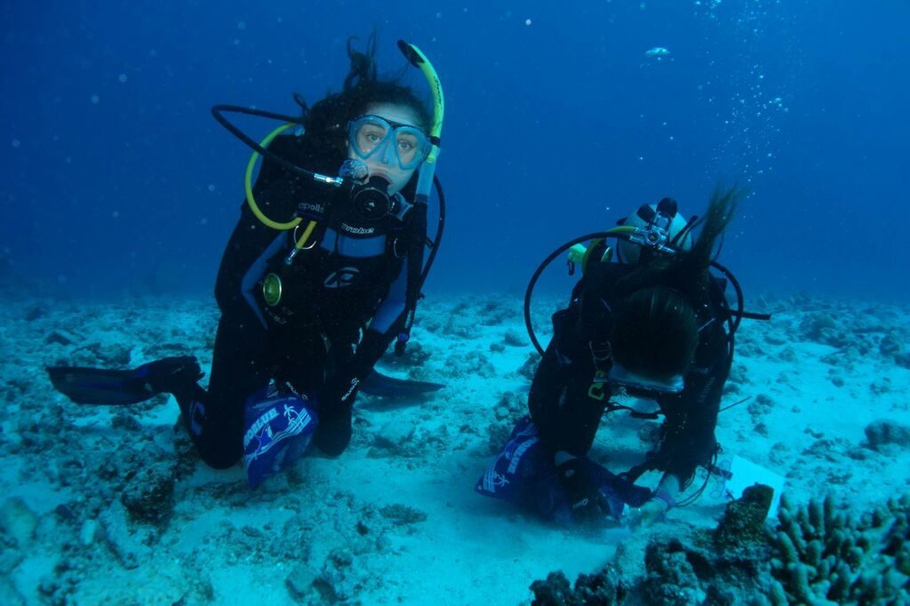 pic 5 underwater work
