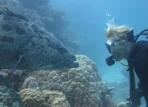 Bridie Allan conducting research near Lizard Island