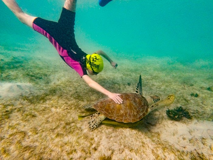 My visit to Lizard Island Research Station