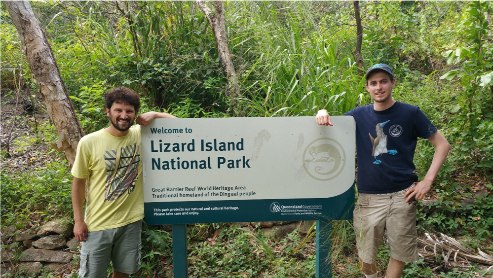 An inordinate fondness: discovering the beetles of Lizard Island Group