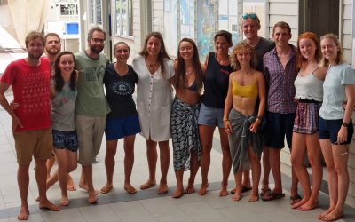 Fellowship travel awards in a time of COVID